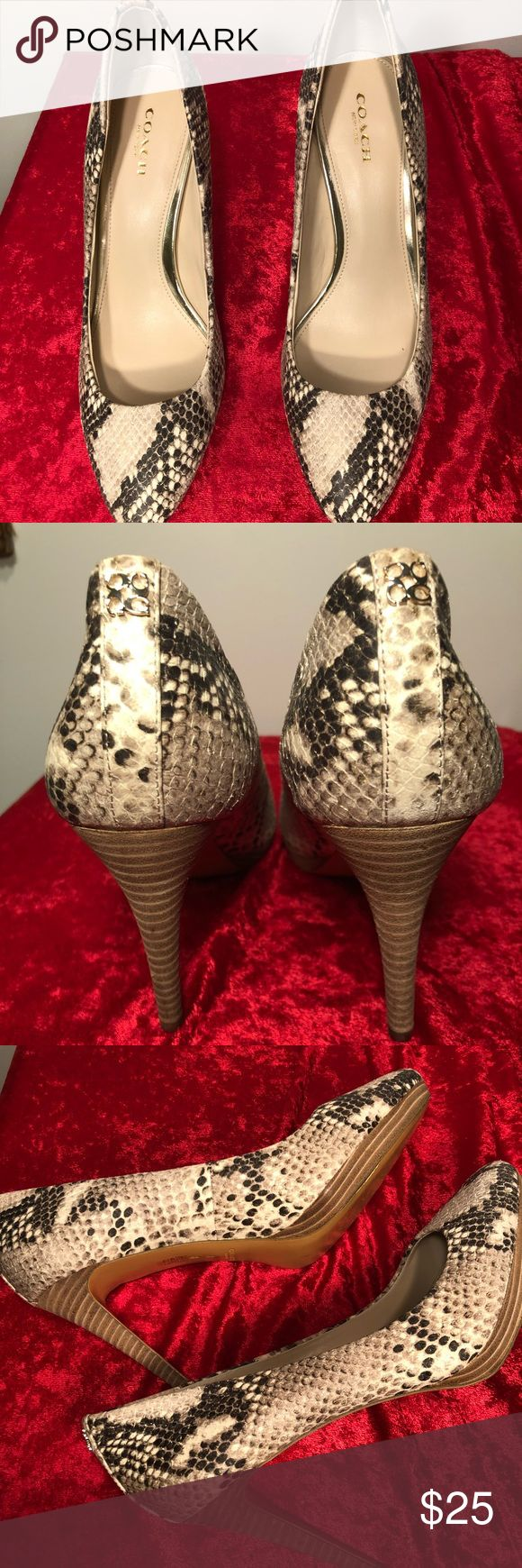 Coach Animal Print High Heels Coach animal-print( python) high heels. No box. The shoes only show signs of wear on the soles ( please refer to pics!) Coach Shoes Heels