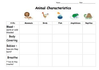 These Animal Classification (Vertebrates) Writing Templates include an Animal Classification Chart, Animal Report Templates, Animal Classification Report Booklet, and a Creative Writing Template. Suggestions for using the templates are included. The templates are structured but leave room for