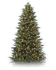 9 Foot Artificial Christmas Trees   Balsam Hill