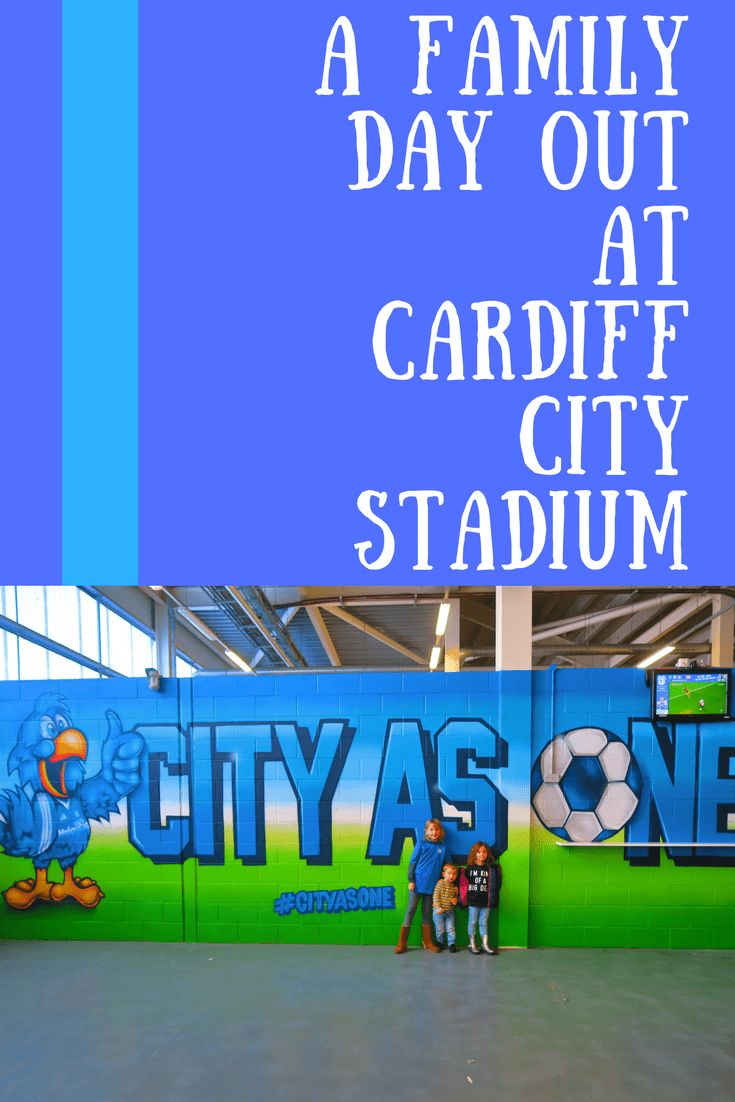 A Family Day Out At Cardiff City Stadium | We Made This Life