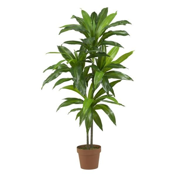Bring life and beauty to your home or office with this dracaena real-touch silk plant. This artificial plant is made of polyester, iron wire and plastic to recreate the feel and appearance of a real p
