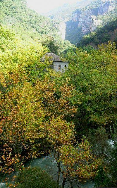 Lousios river ~ Arcadia (Peloponnese), Greece