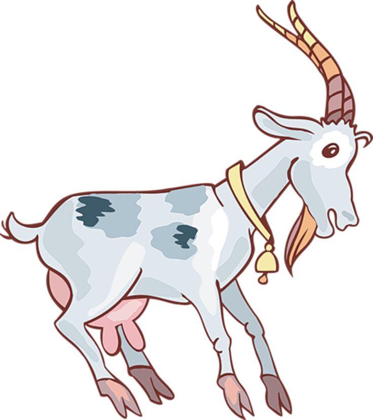 Картинки с изображением козы для детей