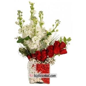 Gül & Şebboy Aranjmanı  Hızlı Çiçek Al ile sevdiklerinize aynı gün teslimat seçeneği ile kare cam içinde kırmızı beyaz taşlar ile süslü 11 adet kırmızı güller ve 5 adet mis kokulu şebboy çiçeklerinden hazırlanmış çiçek aranjmanı sipariş edin.  86,00 tl + kdv  http://www.hizlicicekal.com/cicekler/cicekciler/cicek/61/gul--sebboy-aranjmani/