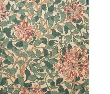 William Morris Honeysuckle Tapet