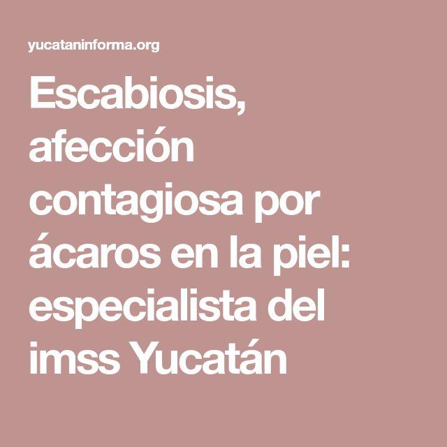 Escabiosis, afección contagiosa por ácaros en la piel: especialista del imss Yucatán