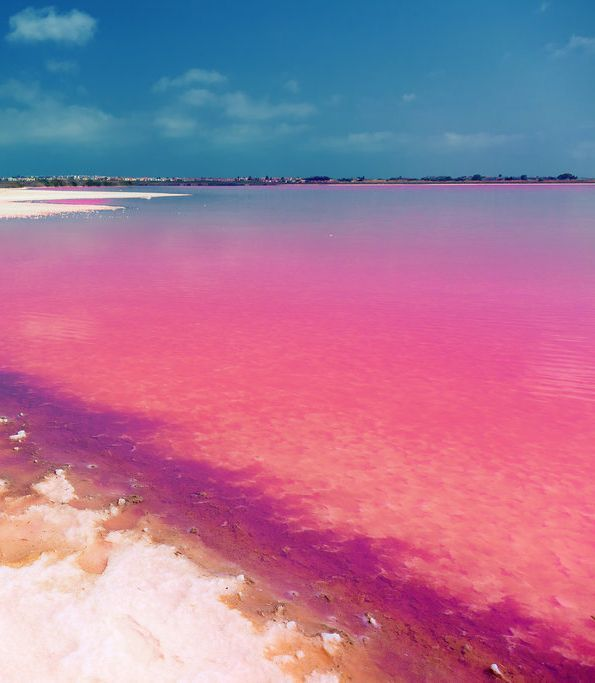 Laguna Salada de Torrevieja, Spain. Those shades of pink, blue, and purple are just unbelievable.