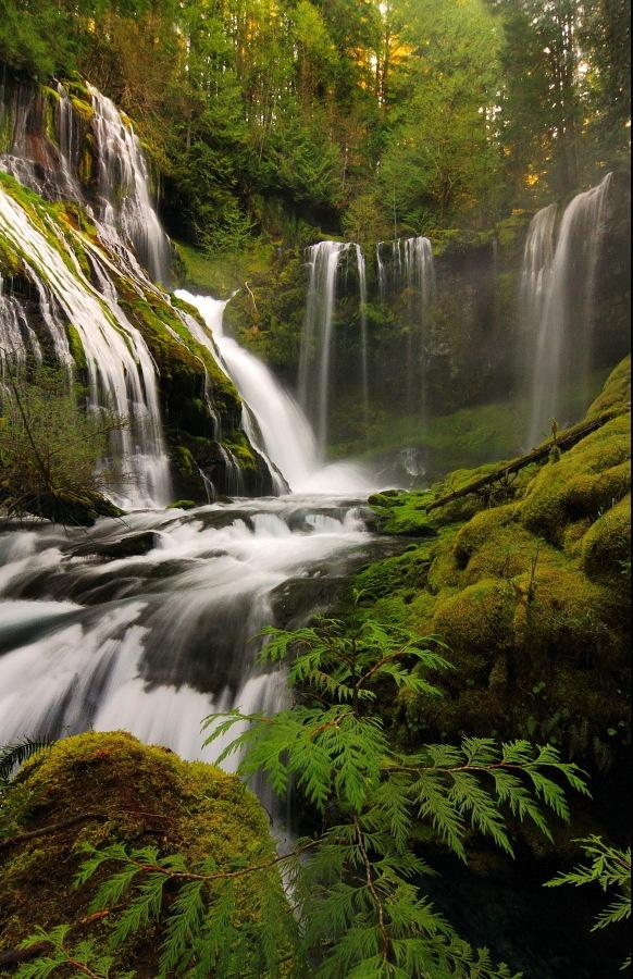 Panther Creek Falls ,Skamania County, Washington