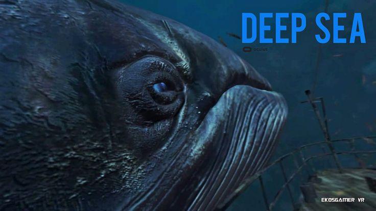 #VR #VRGames #Drone #Gaming Deep Sea - VR 360º - Oculus Rift ballena, criaturas marinas, deep, Deep Sea, DK2, experiencia, mar, mar azul, mar azul profundo, oceano, oculus rift, Oculus Rift (Video Game Platform), oculus rift dk2, Oculus VR, profundidades, raya, realidad virtual, RV, sea, tiburon, video 360º, virtual reality, VR, vr videos #Ballena #CriaturasMarinas #Deep #DeepSea #DK2 #Experiencia #Mar #MarAzul #MarAzulProfundo #Oceano #OculusRift #OculusRift(VideoGamePla