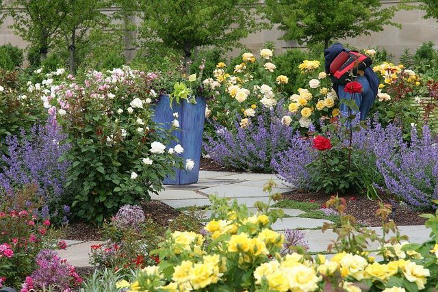 1665 Best Enjoy Flower Gardening Images On Pinterest Beautiful Gardens Flower Gardening And