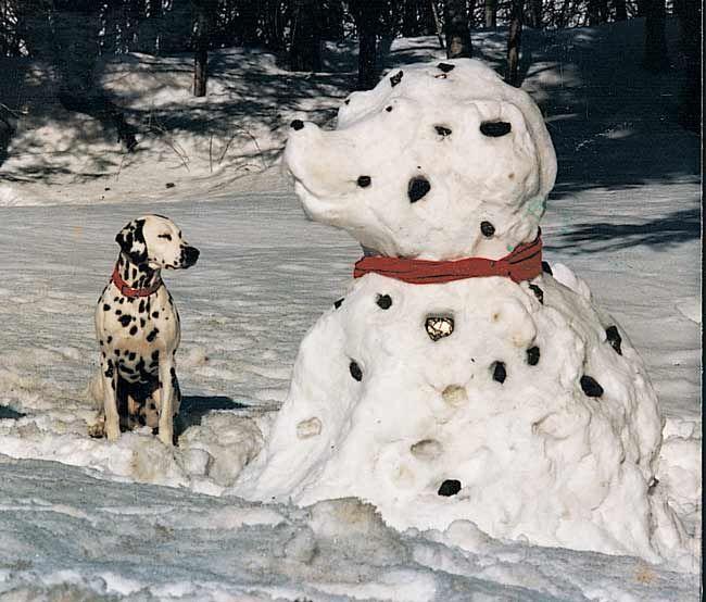animal snow sculptures - photo #11