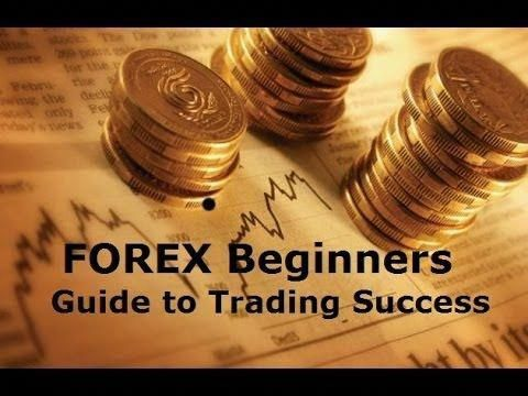 How to Become a Professional Forex Trader | Forex Broker Guru Guide