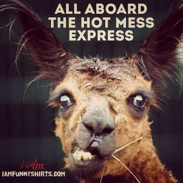 All aboard the HOT MESS express!   @theiambrand http://www.iamfunnyshirts.com/hot-mess-funny-quotes/