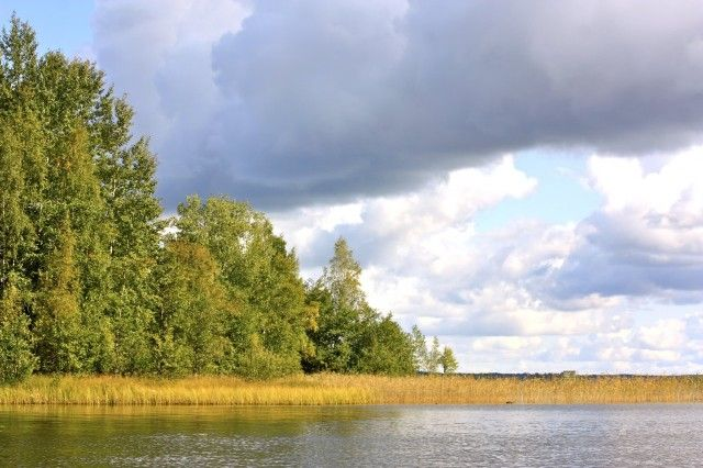 Beautiful nature in Finland.