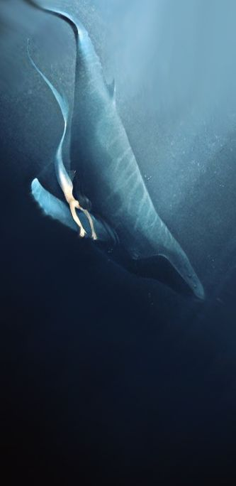 Mermaid riding a blue whale like a remorse, diving into the depths of the ocean - Alexandra Khitrova