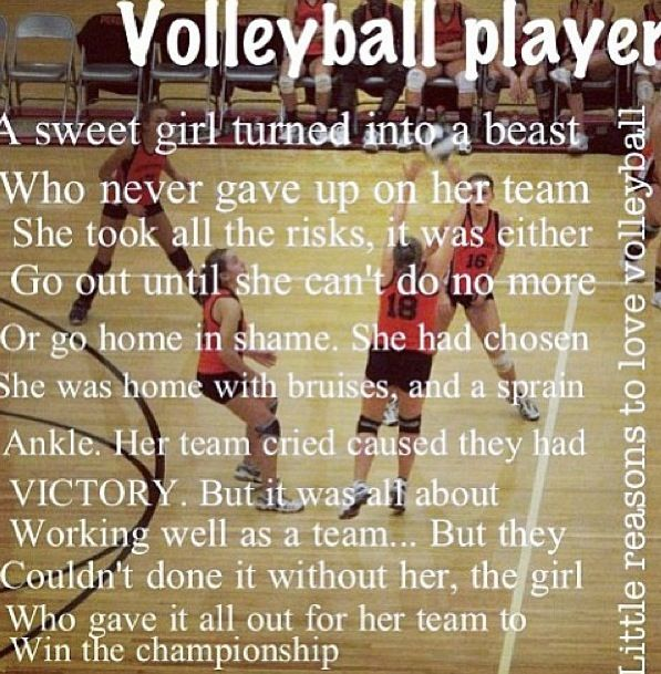Motivational Quotes For Sports Teams: Motivational Quotes For Volleyball Players. QuotesGram