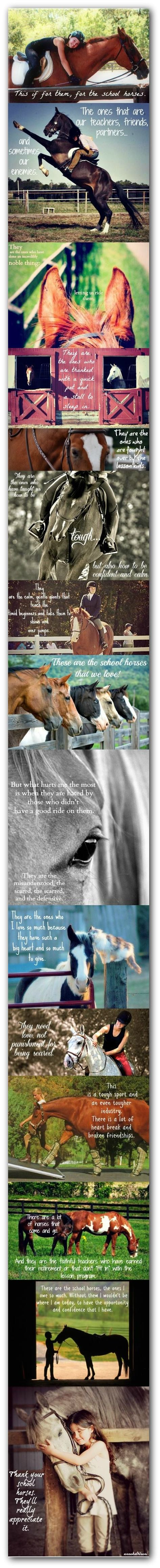 This is true, I have had so many horse that have been great to me and taught me soo many things! Love this!