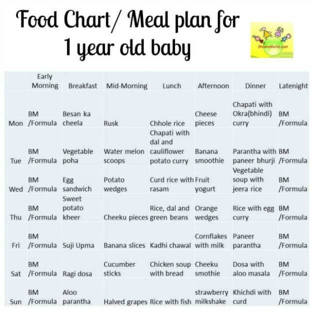 12 Month Baby Food Chart Indian Meal Plan For 1 Year Old Baby With Recipe Ideas Baby Food Diet Baby Meal Plan Baby Food Recipes