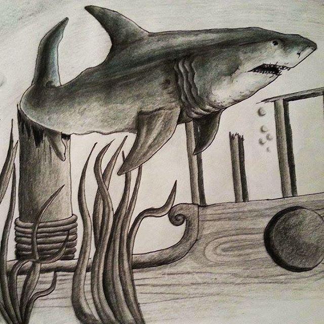 Tubarão branco #desenho #lapisdecor #art #tubarão