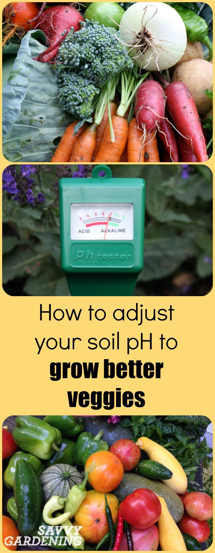 17 Best Ideas About Soil Ph On Pinterest Garden Soil Gardening And Companion Planting