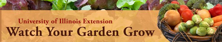Good website for composting info and starting a garden. Not really any good pictures for pinning though.