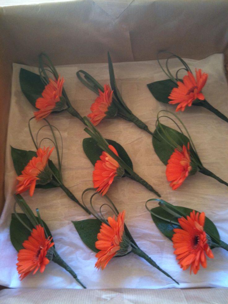 Buttonholes - orange Gerberas                                                                                                                                                     More