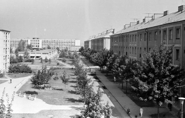 (Sztálinváros), Vörösmarty Mihály utca az Esze Tamás utca felől, háttérben a Ságvári Endre Általános Iskola (ma Hild József Szakközépiskola).