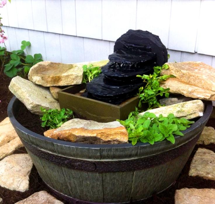 Barrel Water Garden Barrel Pond Growing Watercress