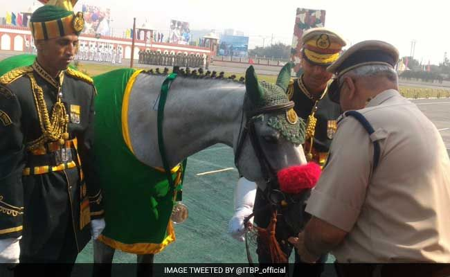 Indo-Tibetan Border Police Dog, Horse Awarded Special Service Medals