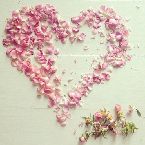 3340 best 1. Beautiful Backgrounds images on Pinterest ...