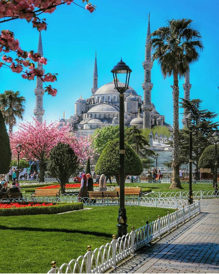 Spring! 📷@emrkrm . . #istanbul#Turkey #Turkish #lovely #stunning#beautiful #bosphorus