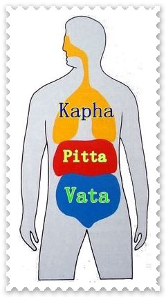 Ayurveda categorizes individuals as per their mind-body types expressed in varying combinations of the 3 sets of basic parameters in different proportions. The mind body constitution at the time of birth is considered one's Prakriti. This often deteriorates in due course influenced by factors ranging from diet, stress etc. The mind body constitution of an individual at any point of time, if assessed to be different from his Prakriti is considered a Vikriti or aberration from the original.