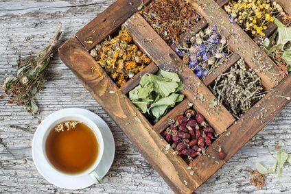 Ein Zyklustee soll den Zyklus harmonisieren und bei Kinderwunsch die Einnistung und damit den Beginn einer Schwangerschaft begünstigen. Allerdings gibt es auch Kinderwunschtee, Babywunsch Tee, KIWU Tee, Klapperstorchtee und Nestreinigungstee.Die Verwirrung ist schnell groß, denn welcher Zyklustee ist der richtige und wann solltest du welchen Tee trinken?Mit diesem Artikel will ich