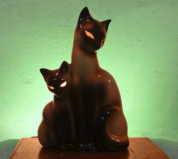 Salt Lamps And Cats Interesting 17 Best Cat Lamps Images On Pinterest  Cat Lamp Cat Stuff And Forts Design Decoration
