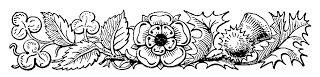 Digital Stamp Design: Free Border Clip Art Thistle Clover Flowers Decora...