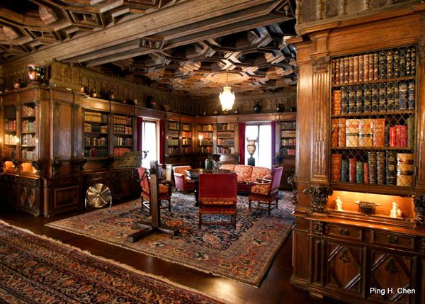 Libraries, Castles and Home libraries on Pinterest