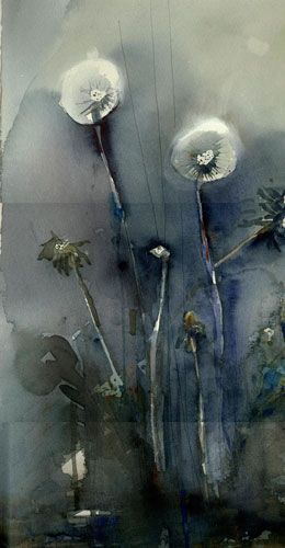 Lena Amstrand  - Dandelion - watercolors