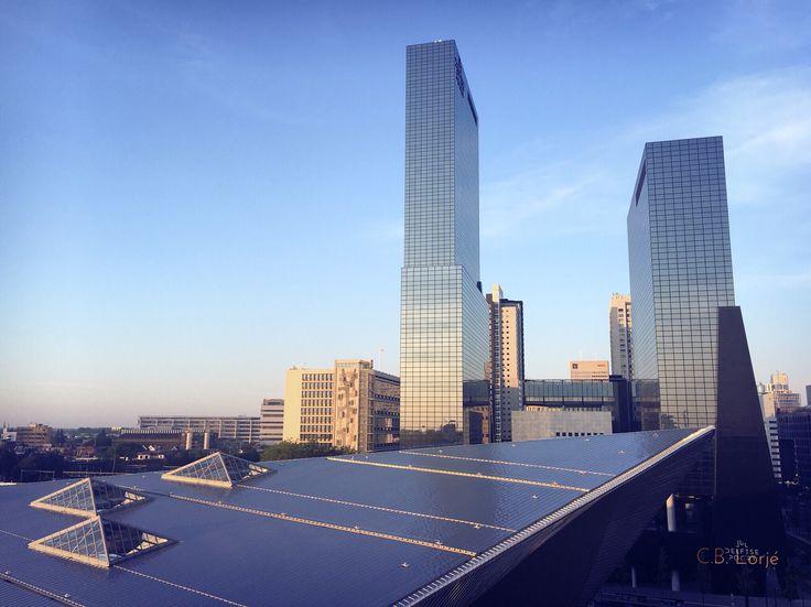 Rotterdam#detrap