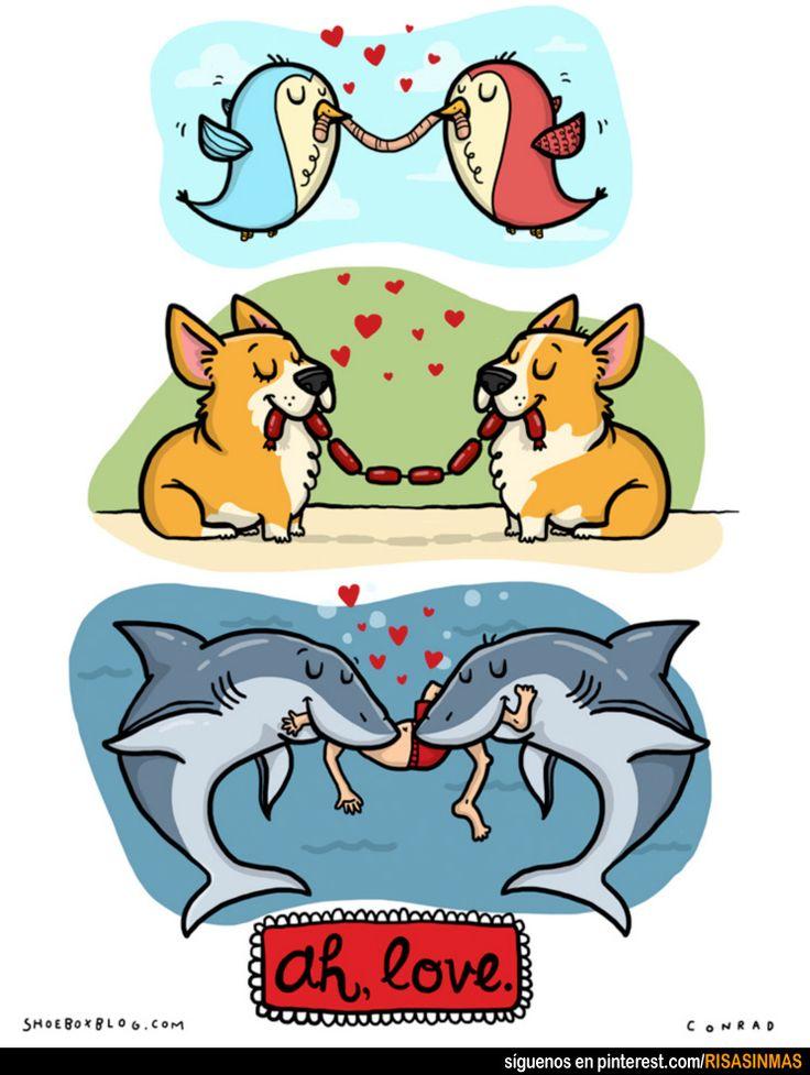 Ah, el amor. Amar es compartir.