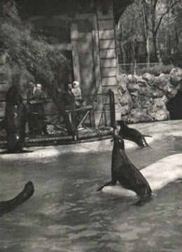Lo zoo dei Giardini Pubblici di Milano Milano, Zoo, Giardino