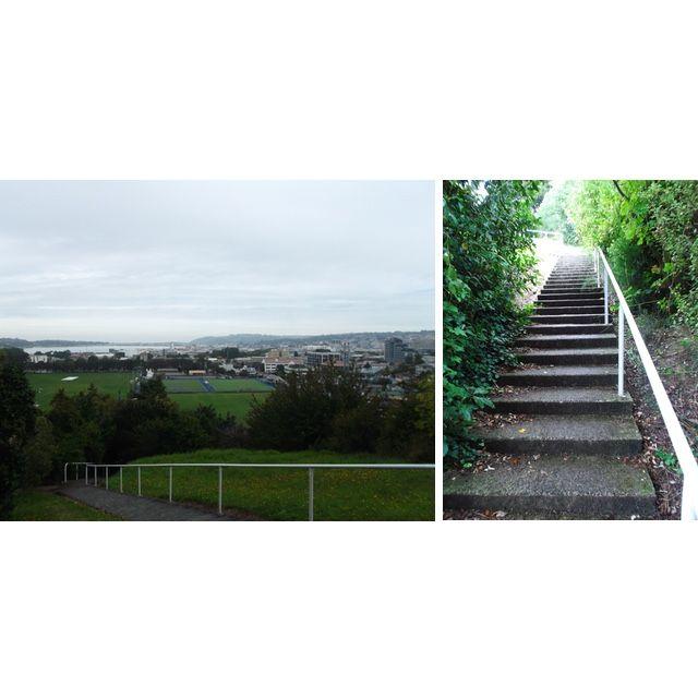 Stair run on a rainy day to Lovelock lookout Dunedin
