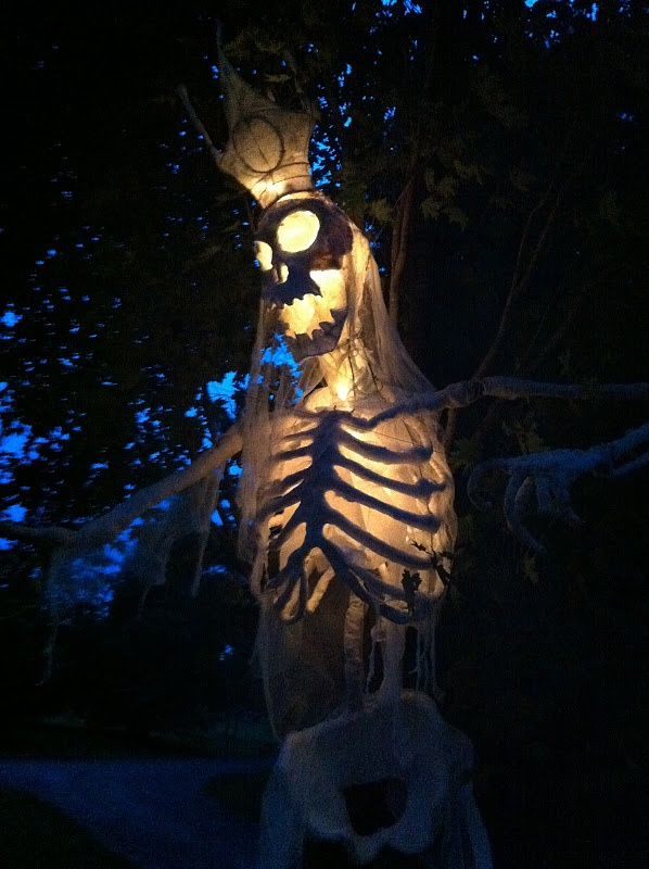 Oooo lighting is everything.: Skeletons King, Night Lights, Halloween Skeletons, Haunted Houses, Costumes Halloweencostum, Halloweendecor Costumes, Lights Skeletons, Martha Stewart, Lights Ideas