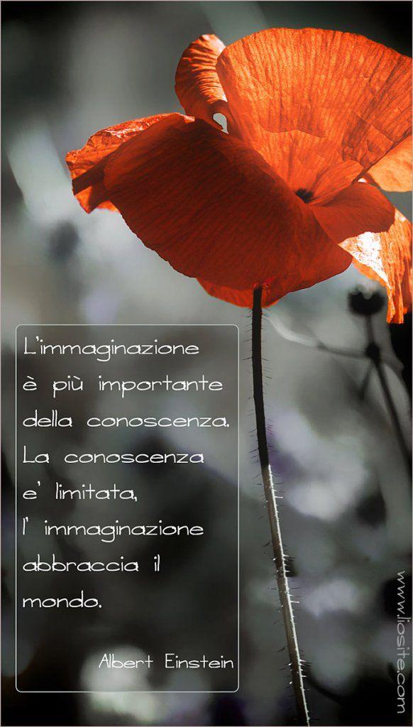 Albert #Einstein - L'immaginazione abbraccia il mondo ...