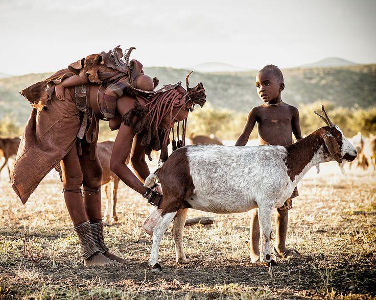 """Landet hvor solen altid skinner, hvor jorden ser ud til at tigge himlen om regn og hvor landskabet strækker sig over hundreder af kilometer uden ende. Ørkener hvor man stirrer i forundring på de dyr og planter, der overlever i dette barske miljø. Denne tur dækker alle højdepunkterne i det centrale og nordlige Namibia og tage en på eventyr og opdagelse """"off the beaten path""""."""