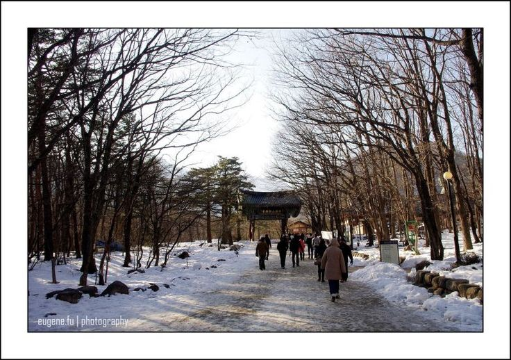 The grand entrance - sokcho, Gangwondo - South Korea