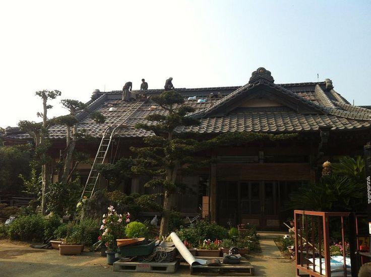 Ibaraki, Hostel