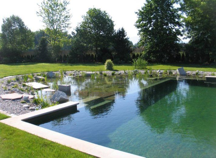Natural Swimming Ponds (NSPs)  Let nature clean the water...      natural pool  Chemical-free water garden and swimming pool. The plant portion, or regeneration zone, is separated from the swimming area by the wall seen a few inches below the water's surface. www.naturalsw