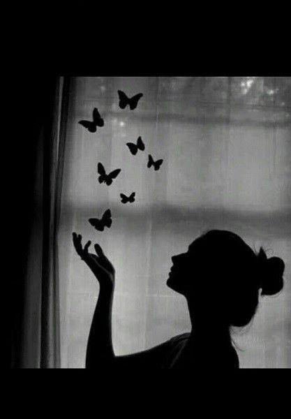 صور خلفيات سوداء Hd عالية الجودة بفبوف Shadow Pictures Butterflies Flying Art