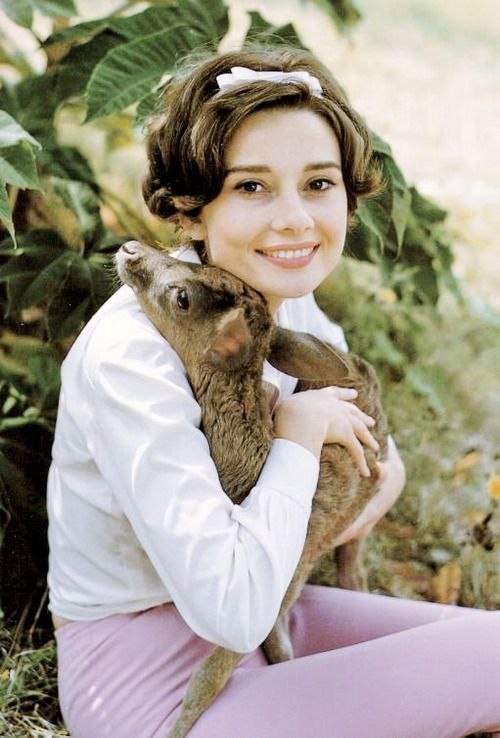 Audrey Hepburn with her deer, Ip, 1958. Photo by Bob Willoughb.