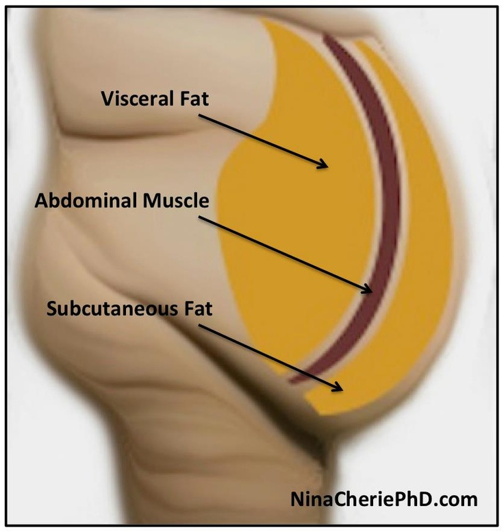 If you're not happy with your abs due to the presence of a 'paunch', 'gut' or 'flab' here is something you should know... Your abdominal muscles are NOT the issue. There are 2 types of fat tissue: visceral (located behind abdominal muscles) and subcutaneous (located in front of abdominal muscles).  Click here to learn more... To learn what it takes to achieve and maintain good health through weight control, pick up a copy of my new book- http://LeavingYourFatBehind.com   #fitness #beauty…